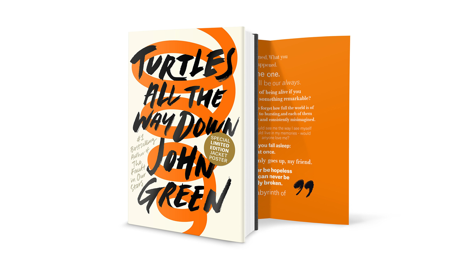 Turtles All The Way Down Book Review